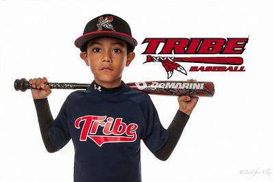 Bakersfield Tribe Baseball