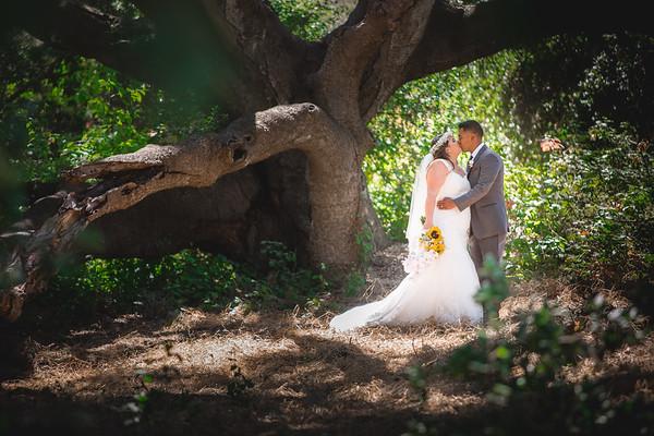 Raynee & Ozi - Wedding Collection
