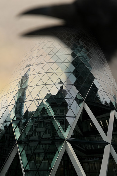 Crow and the Gherkin.jpg