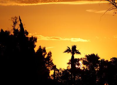02April-Golfcourse-sunrise