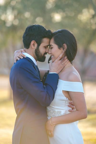Arzoo + Amit Wedding