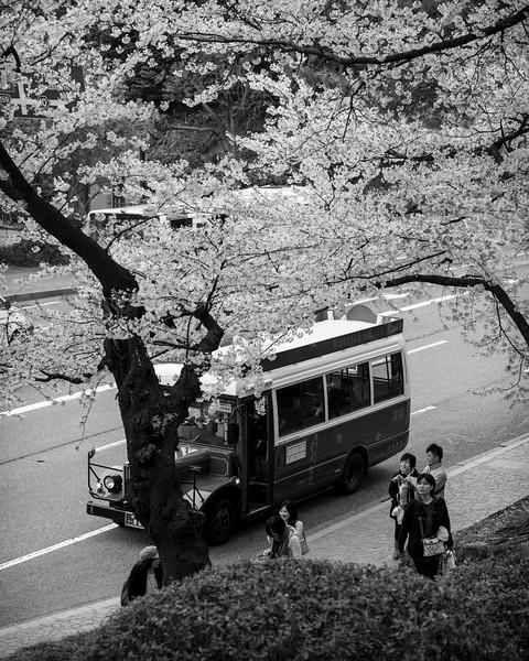 kanazawa 09052 .jpg