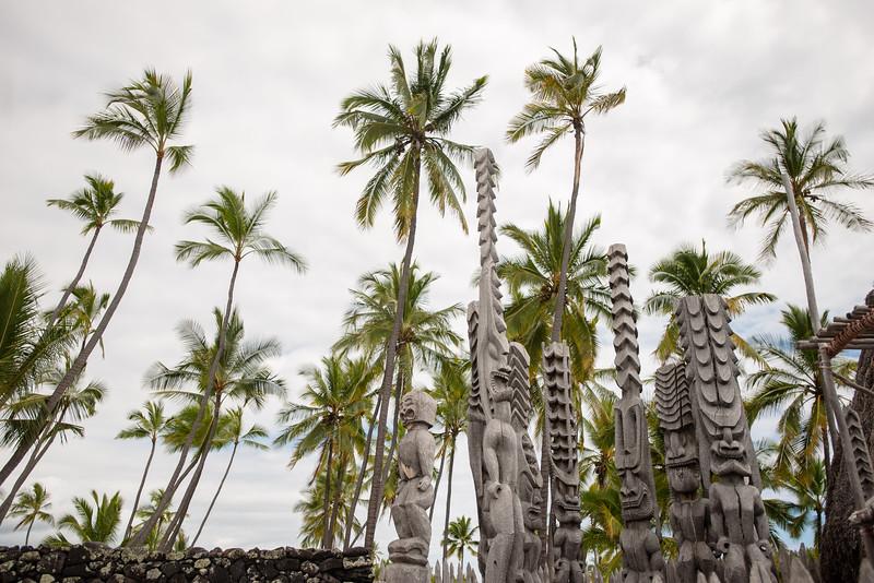 Hawaii2019-344.jpg
