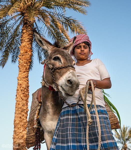 Wadi Al Mawel 198-portrait.jpg