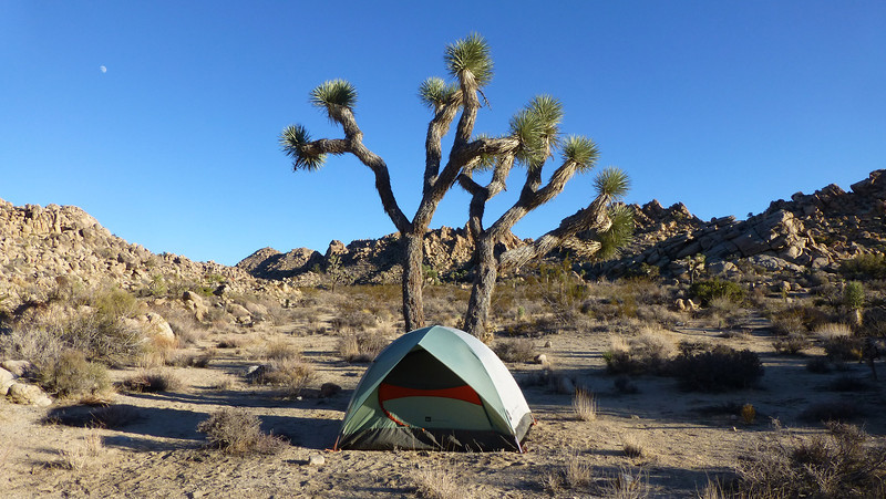Joshua Tree NP, Death Valley NP, CA (Nov 21-24, 2012)