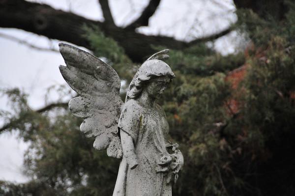 2012-11-09,  Captain Johnson Funeral