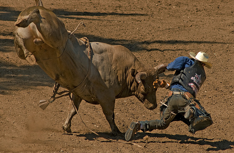 COOMBS RODEO-2009-3755A.jpg