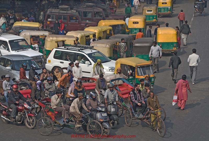 INDIA2010-0130-321A.jpg