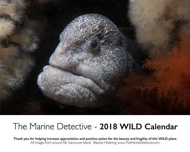 Annual WILD calendar