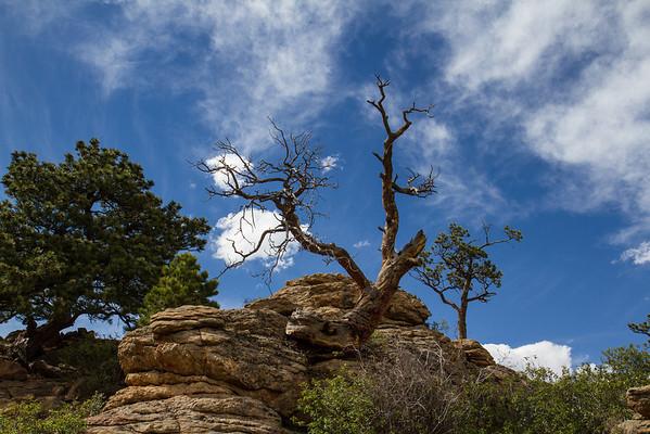 Estes Park Trip 05-05-2012