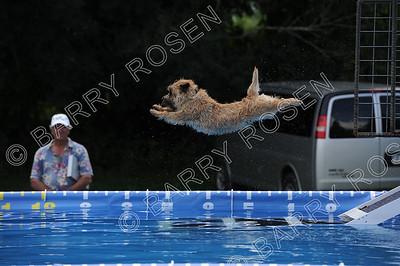 Splash 3 (in run order)