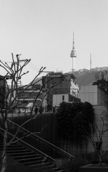 KoreaRoll3020.jpg