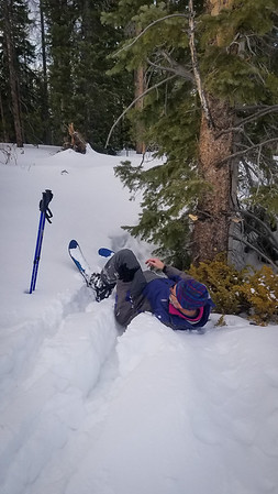 2019-02-Snow