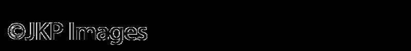 SM-Watermark-black-vert.png