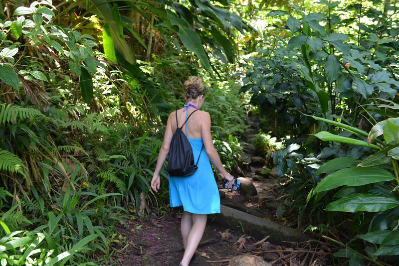 Maui - Hawaii - May 2013 - 5.jpg