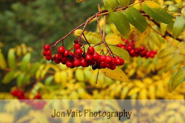 Fall Southern Oregon