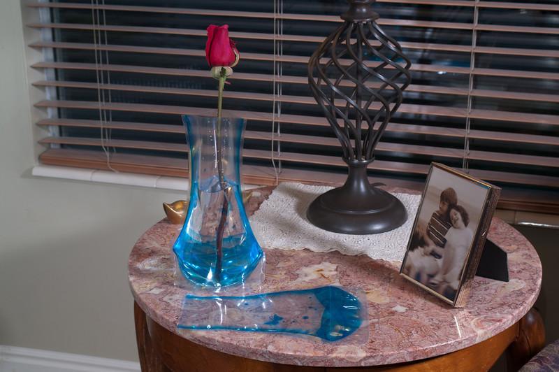 TS Vase-8733.jpg