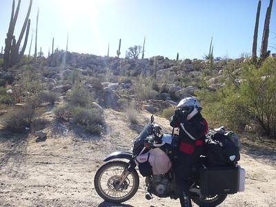 Mexico - Guerrero Negro, Baja California Sur