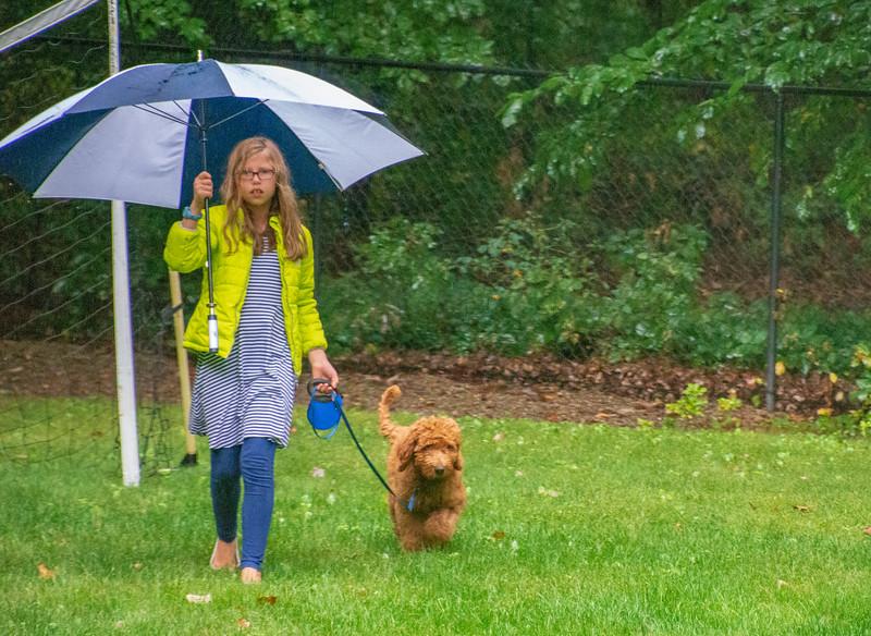 Grade-takingcalvingout-rain-3weeks.jpg