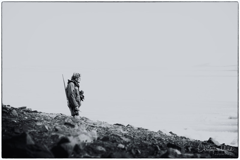 Polar Bear Guard on Champ Island.jpg