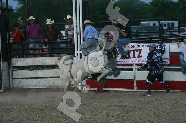 Bull 841