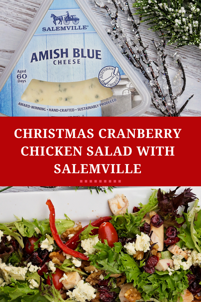 This time of year is so hectic! Slow down this holiday season and enjoy my Christmas Cranberry Chicken Salad with #Salemville Blue Cheese. So delicious! #ad