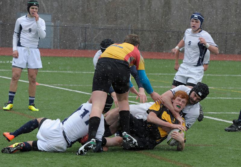 rugbyjamboree_276.JPG