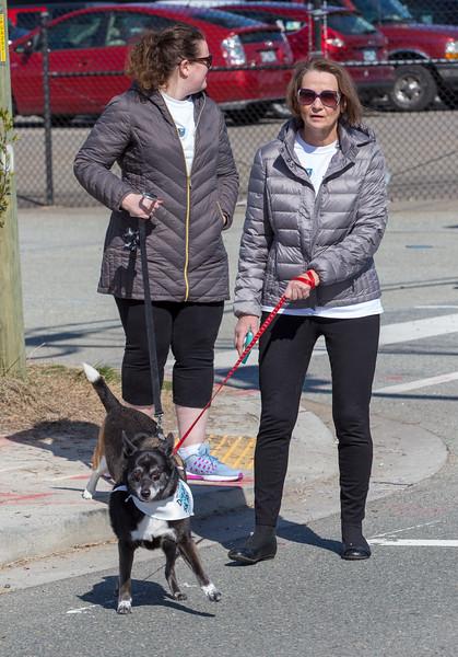 Richmond Spca Dog Jog 2018-638.jpg
