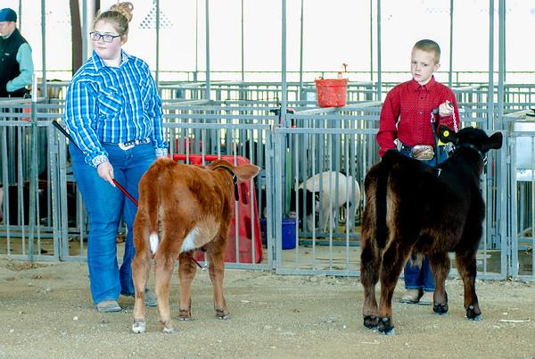 2019 Flint Hills Classic Cattle Show