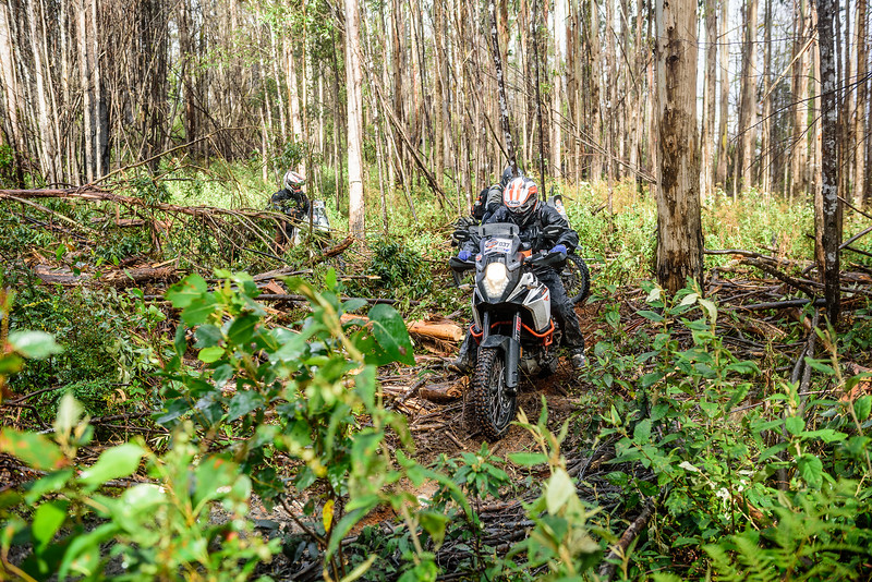 2019 KTM Australia Adventure Rallye (204).jpg