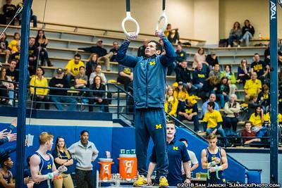 Still Rings - Michigan Men's Gymnastics Vs Penn State 3-24-18