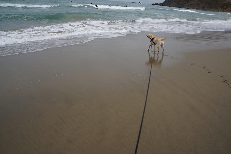 at the beach 2016 163.JPG