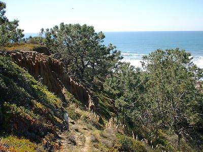 Torrey Pines / Blacks Beach