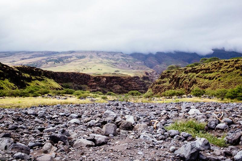 Maui Hawaii-24.jpg