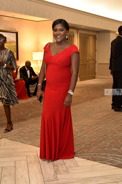 Olawumi's 50th birthday 502.jpg