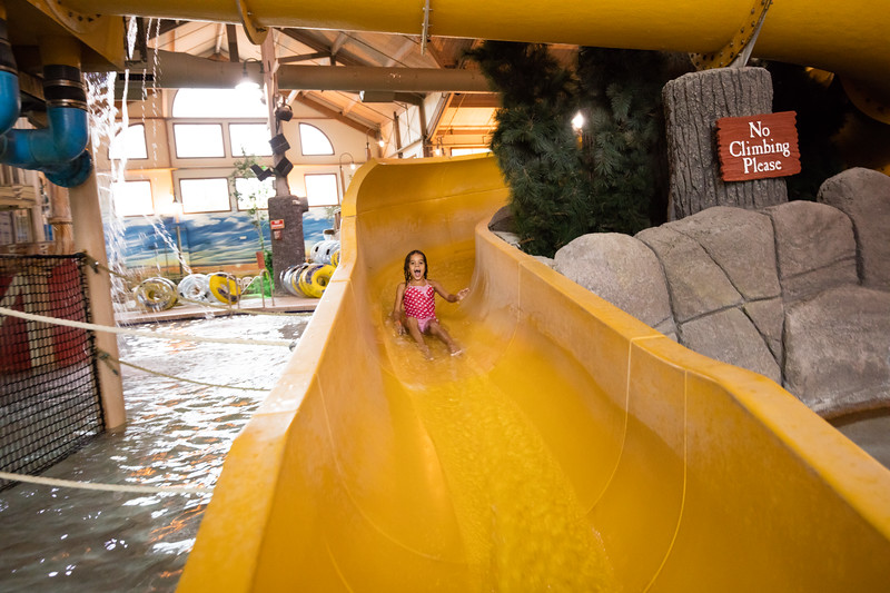 Country_Springs_Waterpark_Kennel-5098.jpg