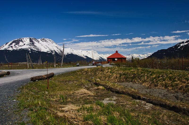 The Alaska Wildlife Conservation Sanctuary near Portage, Alaska on the Seward highway.