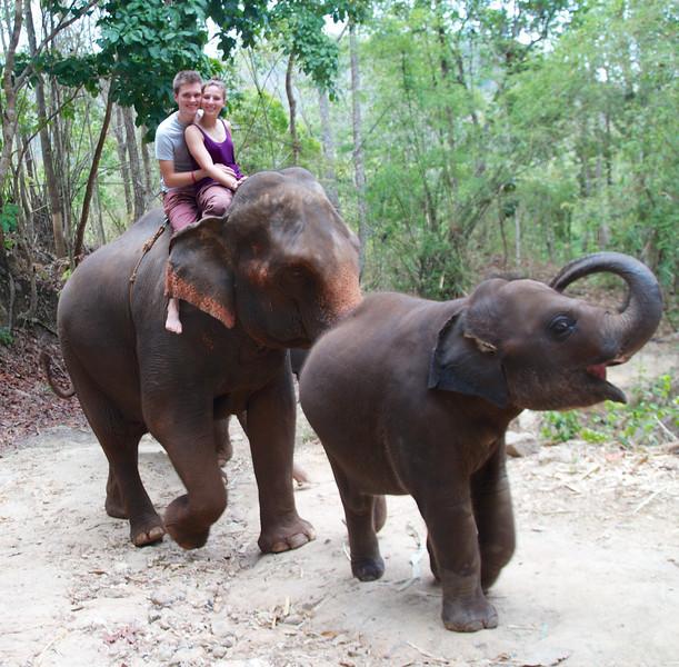 Roewe_Thailand 125.jpg