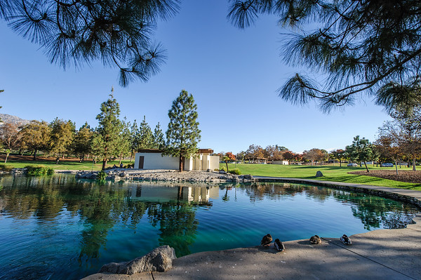 Red Hill Park -  Alta Loma