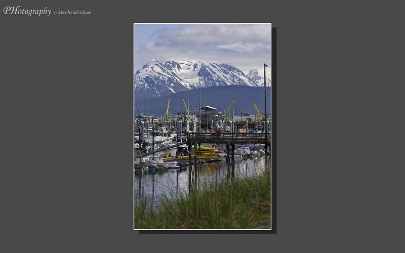 My Alaska 12-08-073.jpg