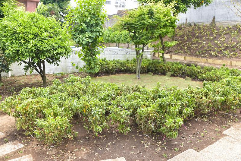 icjc garden-5467.jpg