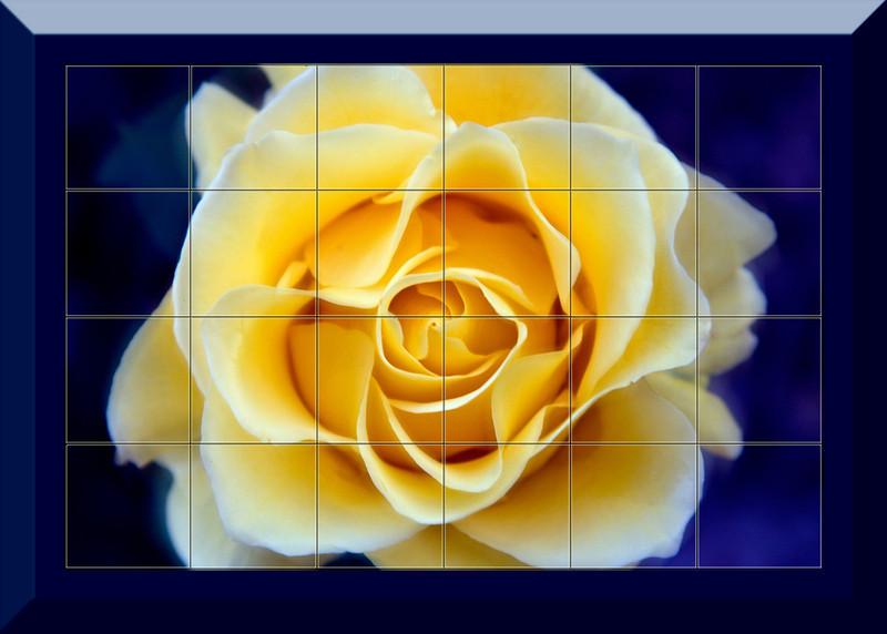 Yellow Rose 24 piece Mural.jpg