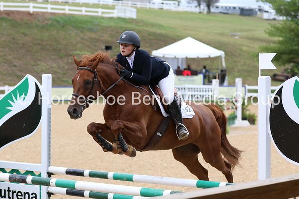 2021 Lexington National Horse Show -- Sunday -- Dee Dee Arena