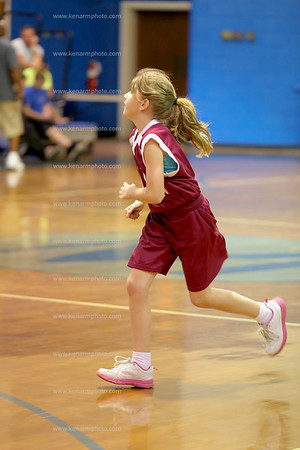 Bladen County basketball 2016 all stars