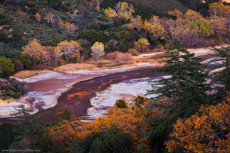 San_Bernardino_National_Forest_East_Fork_of_West_Fork_Mojave_River_Fall_Color.jpg