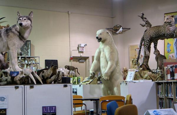 Smithsonian Naturalist Center - Naturalist Skills
