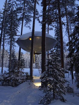 Sweden UFO Treehouse Forest