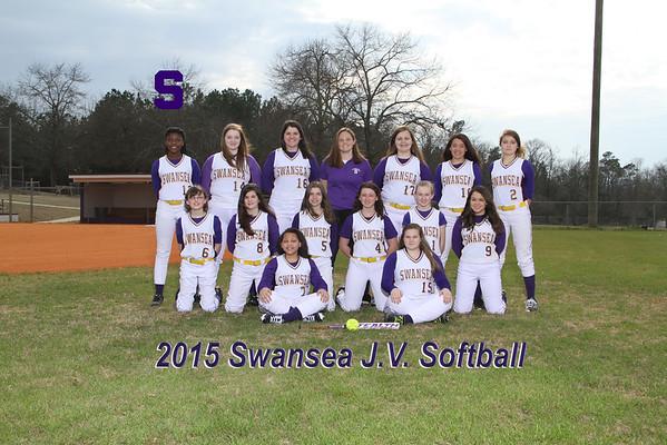 2015 JV  Softball