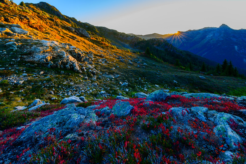Yellow Aster Butte_9_17 (56 of 236).jpg