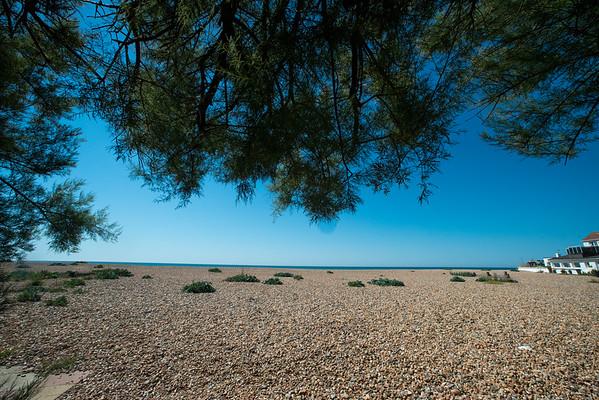 Janine Lowe Beach-252.jpg